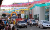 Confira as fotos do desfile de carnaval do Instituto Dom Quixote