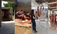 Vereadora Íris Moreira denuncia descaso com matadouro de Valença. Vídeo e fotos