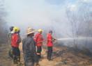 Ação de combate às chamas na zona rural de em Pimenteiras continuam